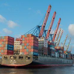 export1-250x250